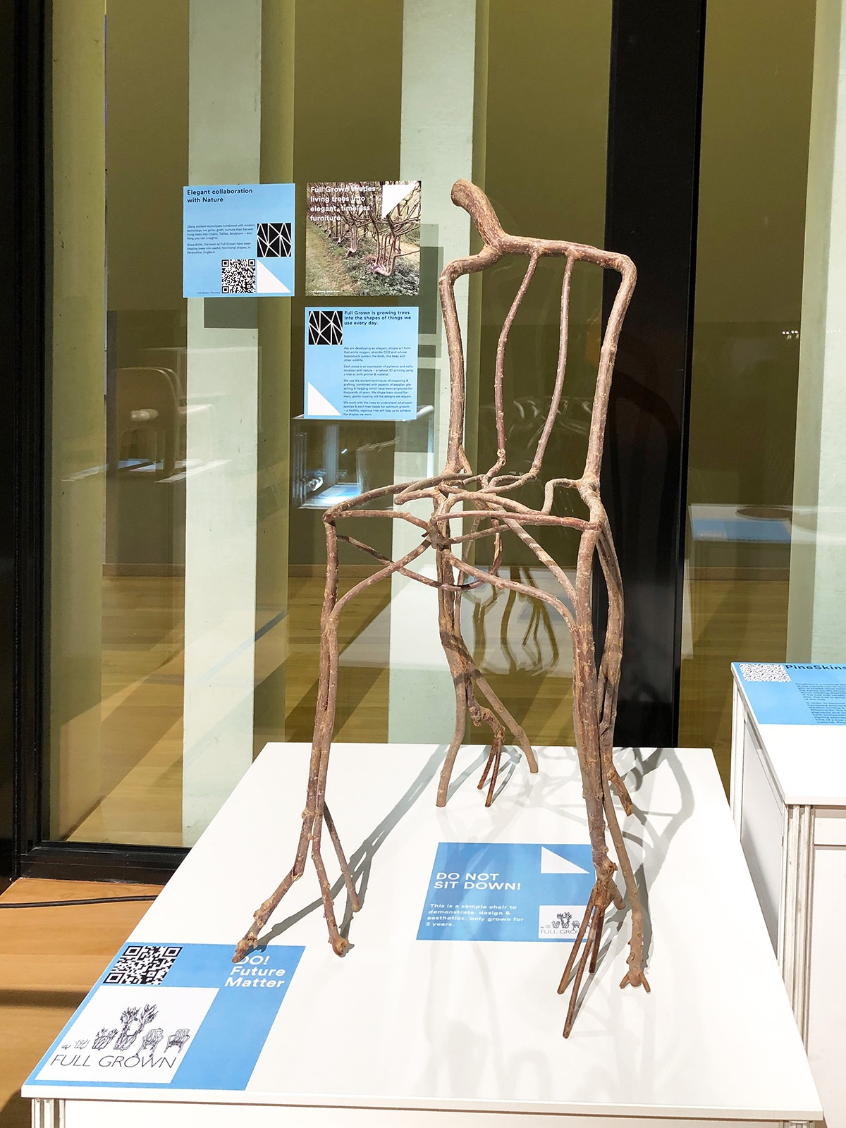 Grown Chair on display in Leipzig at the Designers' Open. Photo. NH Wien