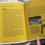 Image of Grown Furniture in bookBrave Green World - Chris Forman and Claire Asher